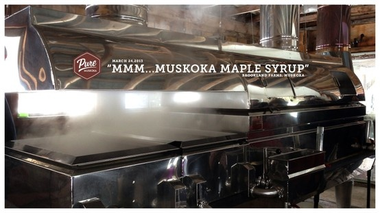We checked out the maple syrup process at Brookland Farms in Milford Bay yesterday. So amazing. This is the wood-fired evaporator in their Sugar Shack. So cool.