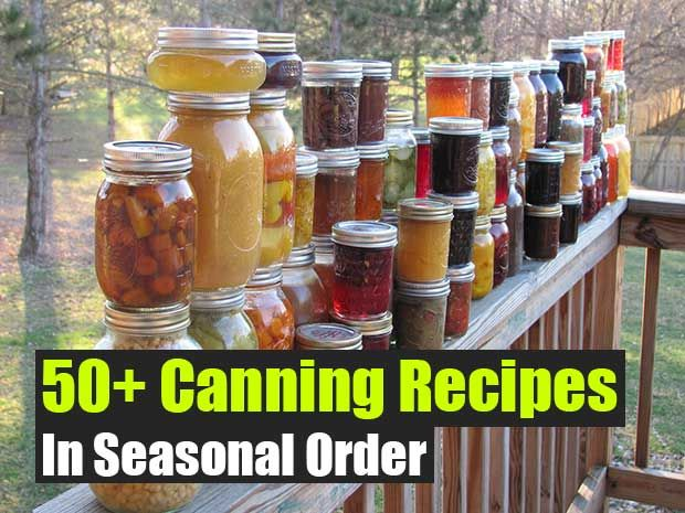 Over 50 Canning Recipes In Seasonal Order - SHTF Preparedness