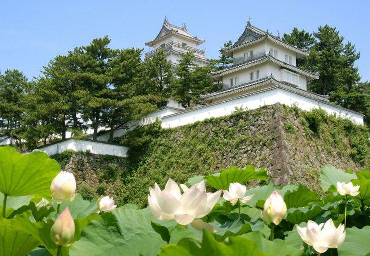 Shimabara Castle, Shimabara City 2 Shimabara Peninsula (Unzen City, Shimabara City, Obama Town & Minami-Shimabara City) Flowers / Castle ruins, temples and shrines