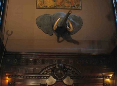 I'm utterly amused by the Harvard Club's peanut bar, which offers quite an assortment of nuts.  But just imagine what a temptation it must be for the poor elephant hanging in the nearby ballroom.