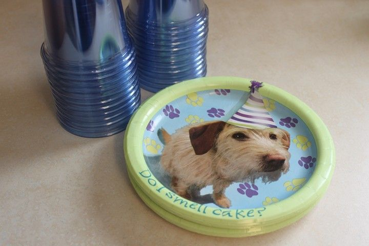 Pet Show Themed Birthday Party - have kids bring stuffed pets from home and give out ribbons!: Themed Birthday Parties, Theme Birthday Parties, Kids Parties, Kids Birthday, Parties Stuff, Birthday Parties Ideas, Kids Bring, Puppies Parties, Stuffed Pet