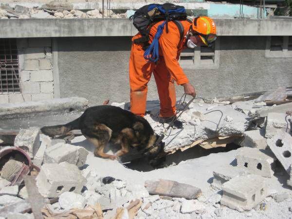 USAR.NL (Urban Search and Rescue Nederland). Het team is formeel geïnstalleerd op 26 november 2003. USAR.NL is een specialistische bijstandseenheid met als missie 'het verlenen van integrale hulp na een ramp of een zwaar ongeval in binnen- en buitenland, gericht op het redden van mensen en dieren zolang dat nog kan'.