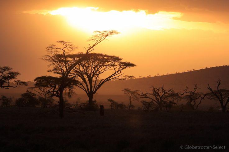 Select-Zelt-Safari Great Adventure - Globetrotter Select