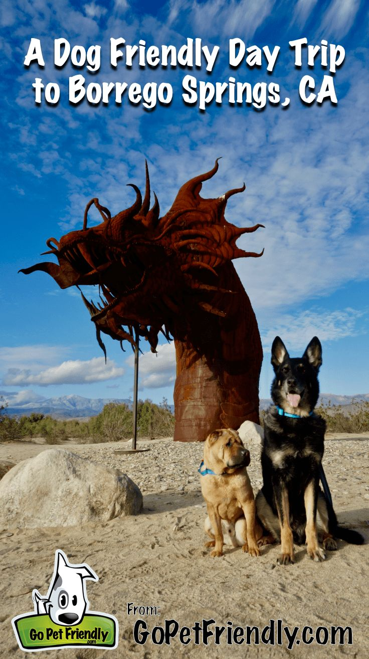 Borrego Springs A Dog Friendly Day Trip Travel With Fido