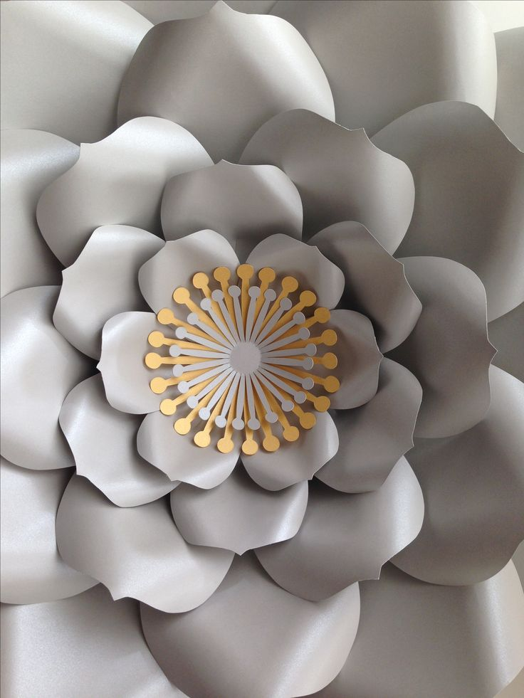 16 best giant paper flowers images on pinterest