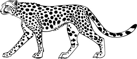 Cheetah Coloring Pages Animal Coloring Pages