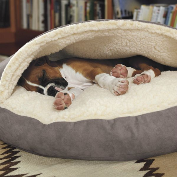 13 Products For Dogs Who Like To Shove Their Bodies Into Small Spaces http://barkpost.com/life/things-for-dogs-who-burrow/ via @BarkPost