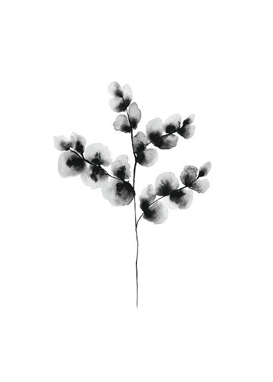 Snygg botanisk tavla med målad akvarell | stilrena svartvita planscher och posters