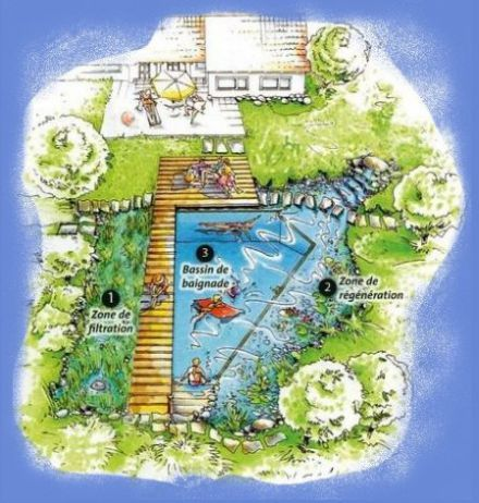 Tpe piscine naturelle am nagement d co ext rieur for Plan piscine naturelle