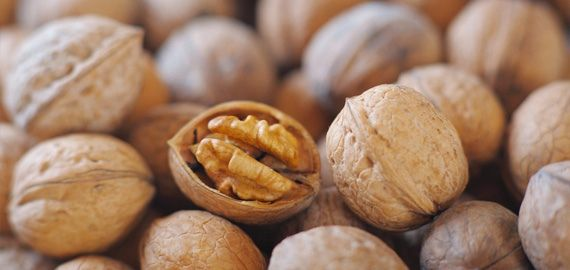 We're already nuts for Walnuts! Here's why you should be, too: Health Benefits of Walnuts from HealthCastle.