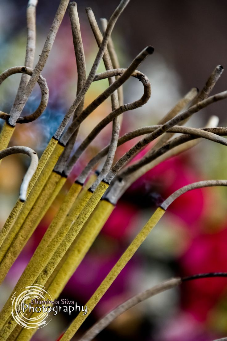Incense by Chaminda Silva on 500px
