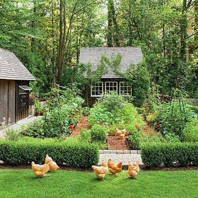 Dream Garden! It Even Has a Chicken Coop..