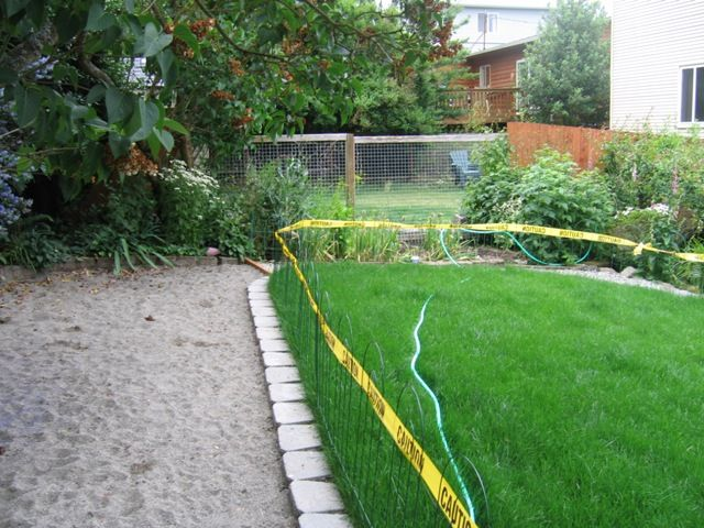 A Seattle Dog Friendly Garden Design