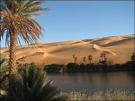 Oasis algerie -