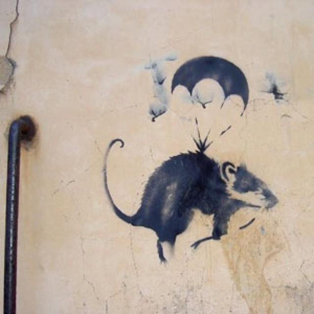 invasion of the Rat Patrol - street art . Banksy . Rat. 000