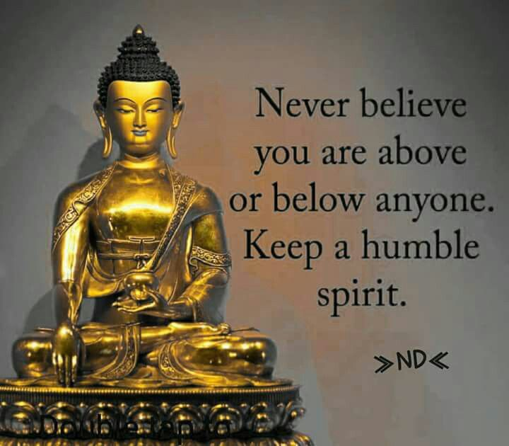 God Buddha Quotes In Hindi: Best 25+ Humility Quotes Ideas On Pinterest