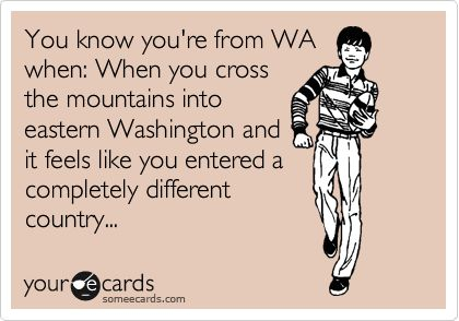You know you're from Washington when... this is what I looove about our state, you get like all 50 states in one!