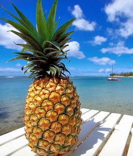 Pineapple  (Ananas comosus) quick weight loss food...