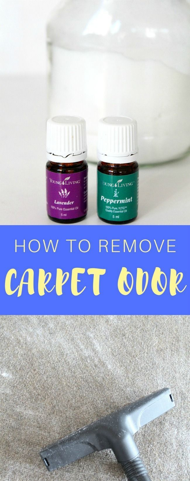 HOW TO REMOVE CARPET ODOR - Are you sick of your carpet odor? Get it to smell fresh and nice again the easy, natural, homemade way. Here's how to remove carpet odor without an expensive deodorizer! #carpetodorremover #DIYcarpetodorremover