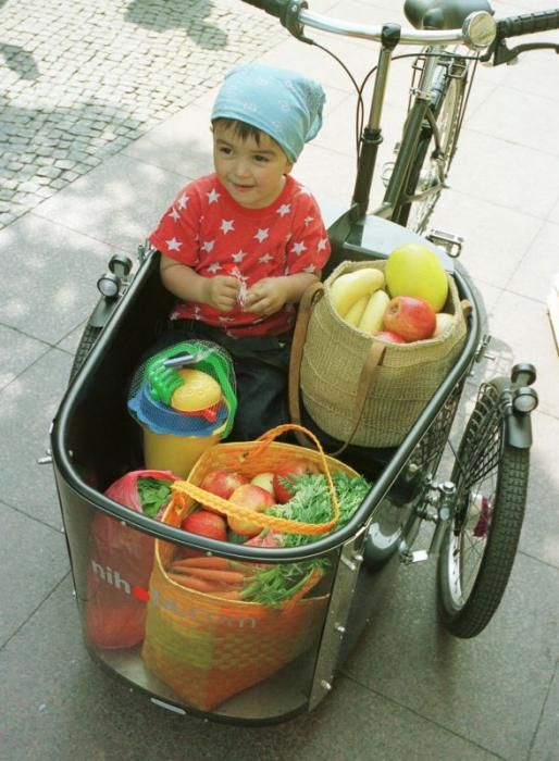 The Nihola Tricycle is the Dutch urban starlet of transport bikes.