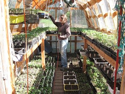 Subsistence Pattern: In the Greenhouse
