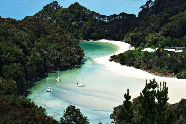 """Grâce à un pari fou, """"la plus belle plage du monde"""" rendue à la Nouvelle-Zélande"""