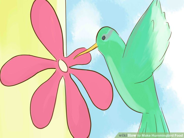 homemade hummingbird nectar - Homemade Hummingbird Food