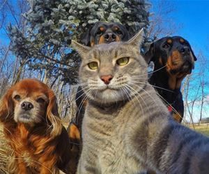 selfie of the whole crew funny picture