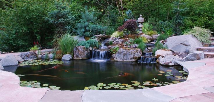Www.stonepeoplellc.com   Arizona Sandstone And Pennsylvania Bluestone Patio,  Koi Pond With Waterfalls And Constructed Wetland. Www.facebook.com/stu2026