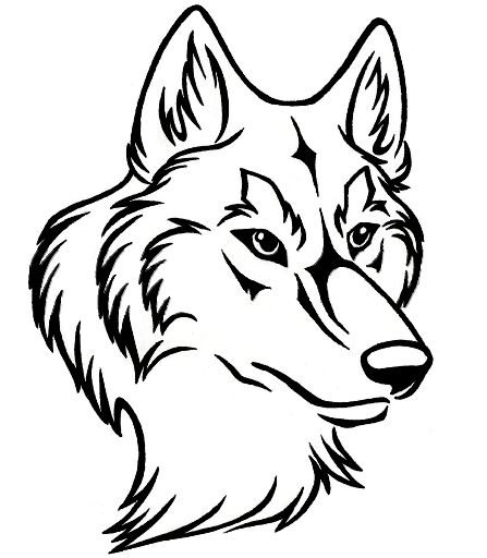 Lineart Wolf Tattoo : Line art wolf head google search craft patterns