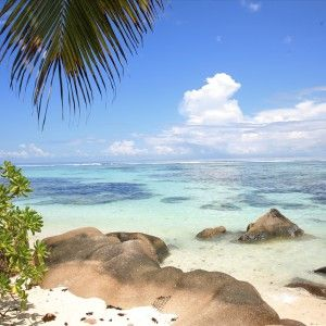 Praslin (Seychelles) Press Tours www.presstours.it