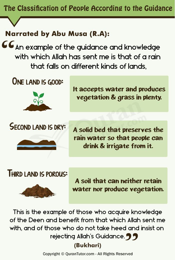 3 Kinds Of Soils – The Excellence Of Seeking Knowledge