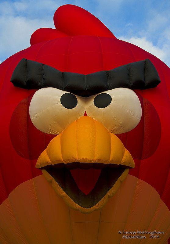 Balloons Over Waikato 2014 Angry Birds