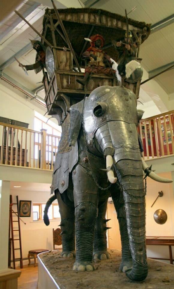 Armature Animali (6)War Elephant                              …