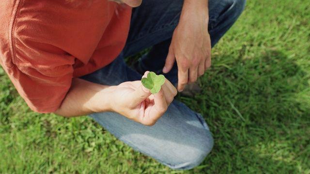 Nur als Deko schön: Die besten Tipps gegen Klee im Rasen