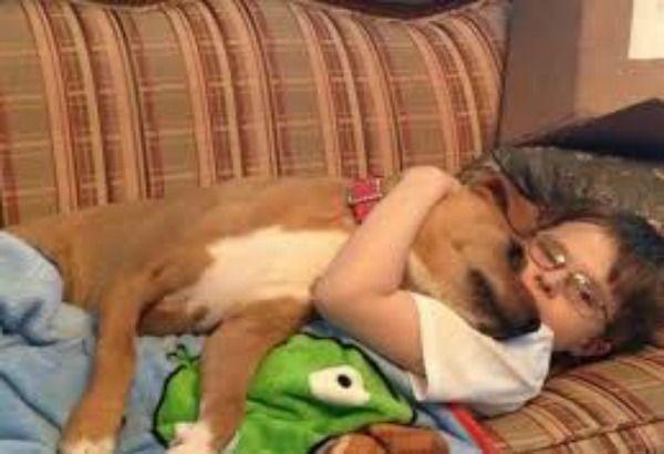 Teneri cuccioli Notizie: La storia di Xena e Johnny, un bimbo che soffre di...