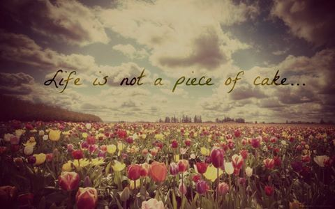 Life is not...