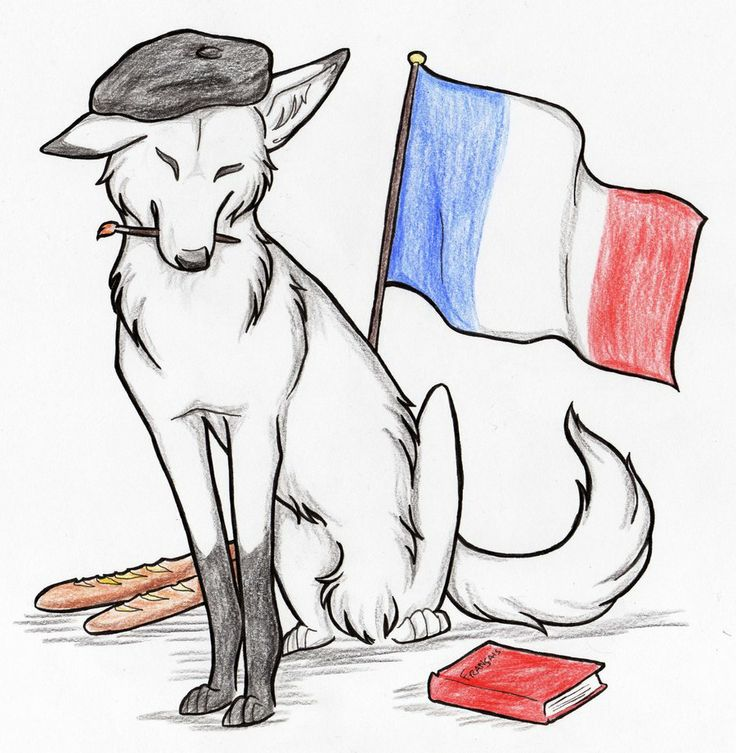 Ohio's (OFLA) ongoing list of authentic resources for French, grouped by themes