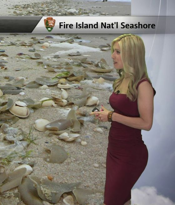 Hot Weather Girl Kristin Clark explains the Polar Vortex not to be confused with…