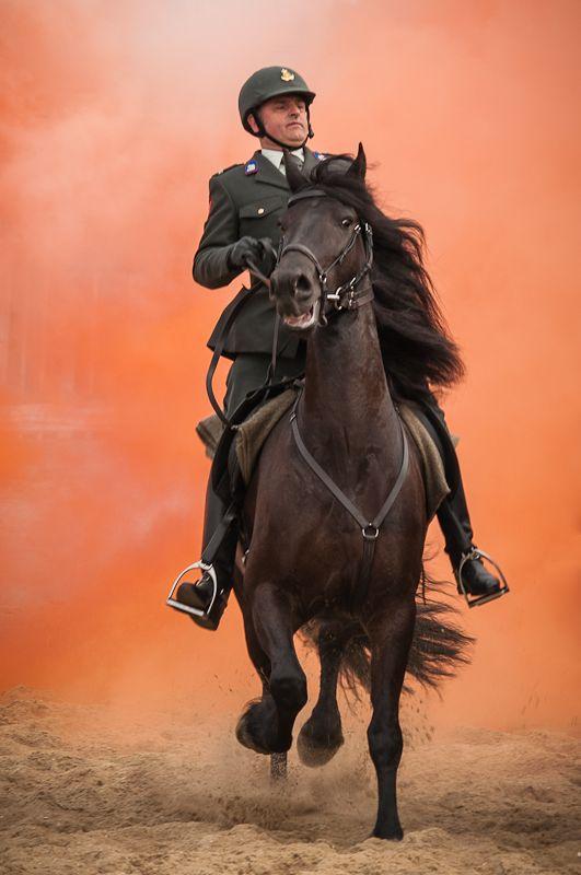 Voor het Kurhaus in Scheveningen oefenden vanmorgen de paarden die morgen meelopen in de stoet van Prinsjesdag. Elk jaar oefent de Cavalerie Ere-escorte de dag voor prinsjesdag op het strand Paarden en ruiters oefenden met de effecten van machinegeweren, rookbommen,…Lees meer ›