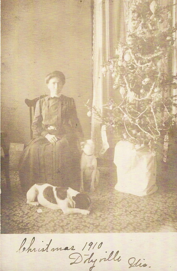 Vintage christmas trees and putzes 1910 - Xmas Rp Pc Christmas 1910 Dotyville Wi Womaqn Two Dogs And Tree Ebay