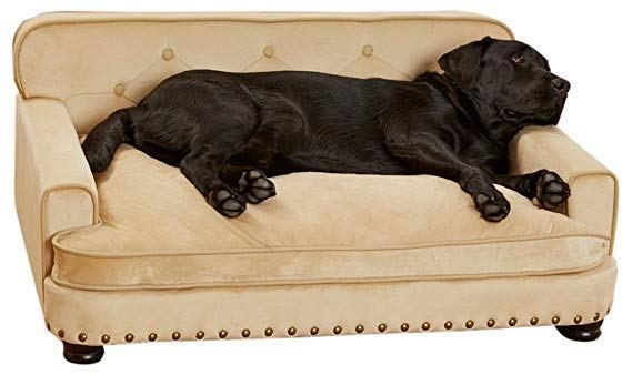 Fancy Furniture For Fancy Pets Soft And Beautiful This Sofa Is Not Only Comfortable For Good Boys And Girls It H Pet Sofa Luxury Dog Couch Dog Bed Furniture