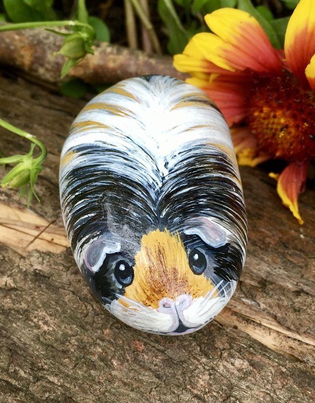 Guinea pig hand painted pebble pet portrait