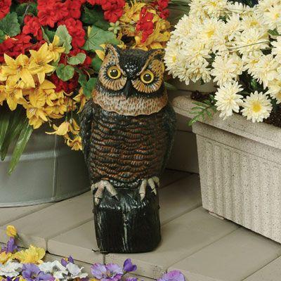 Garden Owl. Garden Owl Has A Non Moving Head. Made Of Durable,