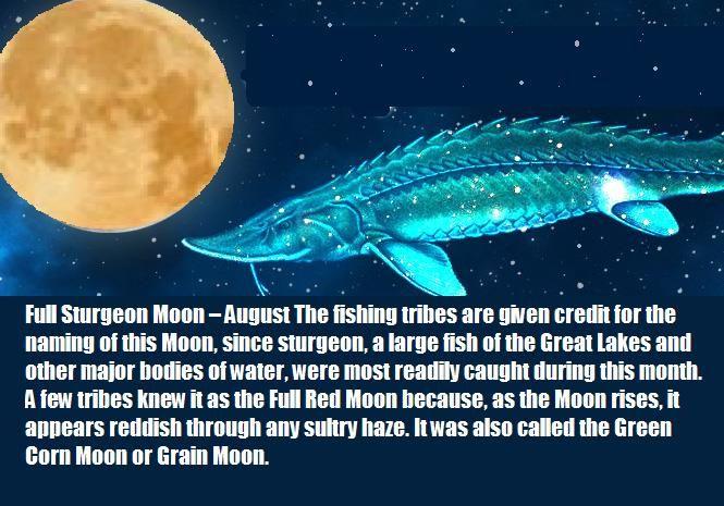 full moon august - photo #44