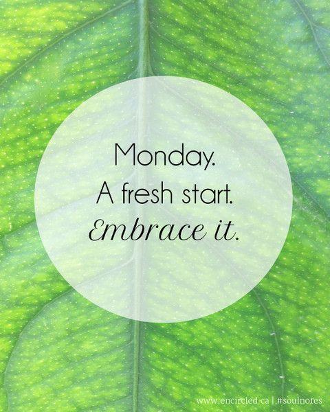 Mondays. Embrace it. http://WildlyAliveWeightLoss.com #WildlyAlive