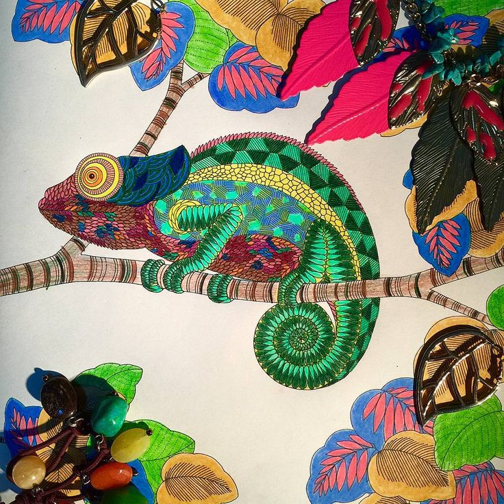 If A Chameleon Plays With My Accessories Will It Look Like This