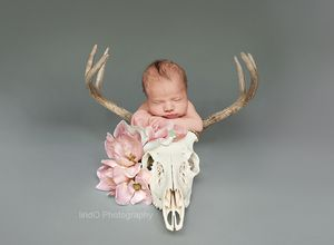 newborn baby photo photography  floral daddy hunter hunting trophy deer lindo antler baby