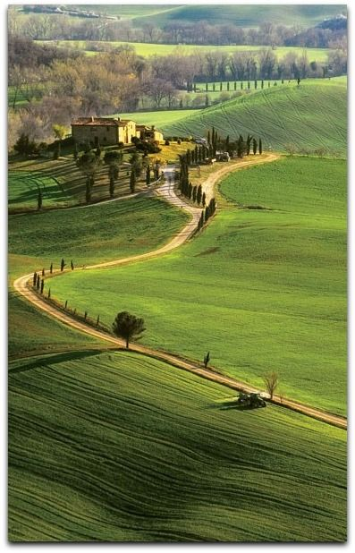 A winding road traces a hilltop in Italy's Val d'Orcia region.