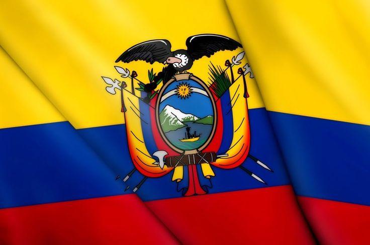 3x5 Ecuador Flag Big Indoor Outdoor Ecuadorian Country Banner